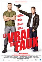 Le Vrai du Faux FRENCH DVDRIP 2014