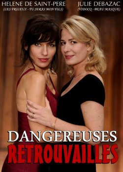 Dangereuses Retrouvailles FRENCH DVDRiP 2013