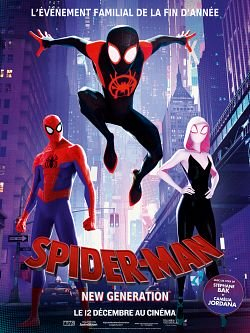 Spider-Man : New Generation FRENCH BluRay 720p 2018