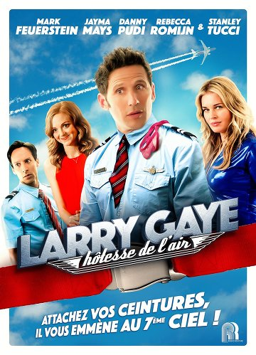 Larry Gaye: hôtesse de l'air FRENCH DVDRIP 2016