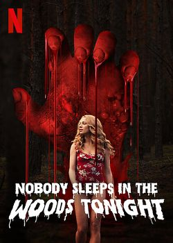 Nobody Sleeps in the Woods Tonight FRENCH WEBRIP 1080p 2020