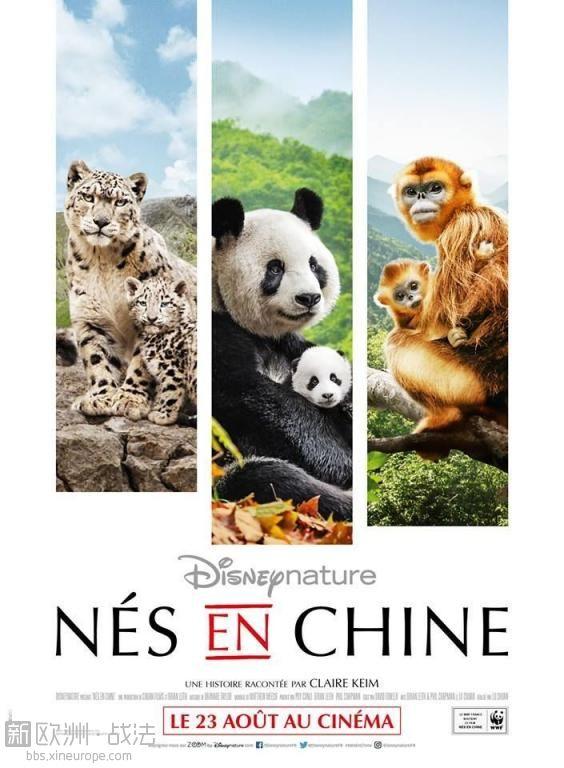 Nés en Chine FRENCH BluRay 720p 2017