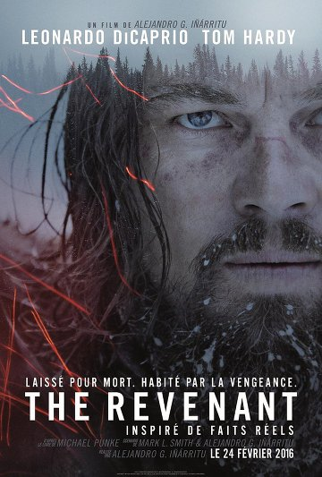 The Revenant VOSTFR DVDRIP 2016