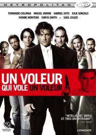 Un voleur qui vole un voleur FRENCH DVDRIP 2012