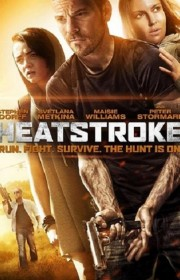 Heatstroke FRENCH DVDRIP 2014