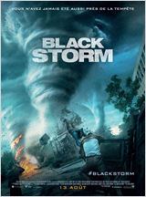 Black Storm (Into the Storm) VOSTFR DVDRIP 2014