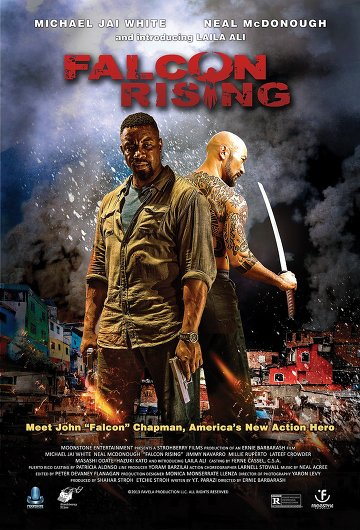 Falcon Rising FRENCH DVDRIP 2015