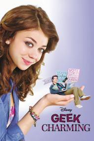 Le Geek Charmant (Geek Charming) FRENCH DVDRIP 2012
