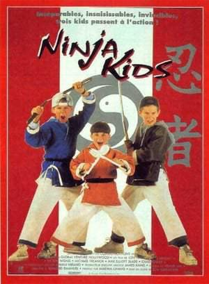 Ninja Kids (Integrale) FRENCH DVDRIP 1992-1998
