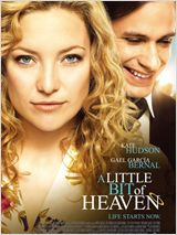 A Little Bit of Heaven FRENCH DVDRIP 2012