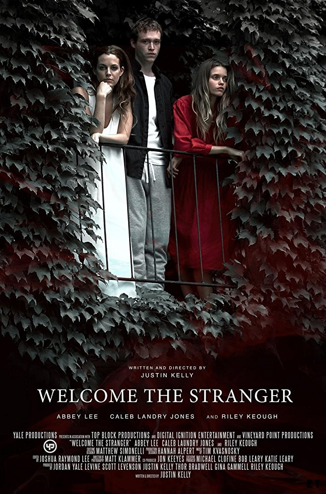 Welcome the Stranger FRENCH WEBRIP 1080p 2018
