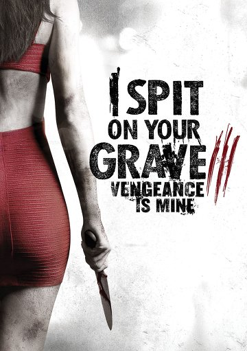I Spit on Your Grave 3: Vengeance is Mine VOSTFR DVDRIP 2015