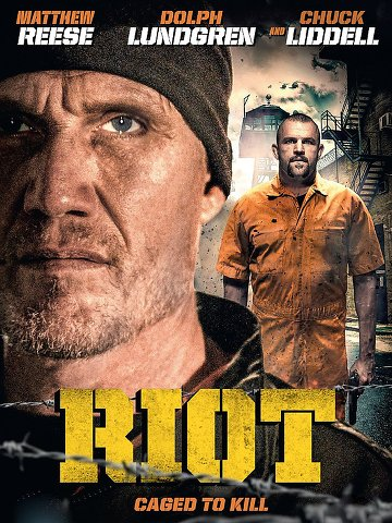 Riot TRUEFRENCH DVDRIP 2015