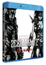 Zebraman 2 FRENCH DVDRIP AC3 2011