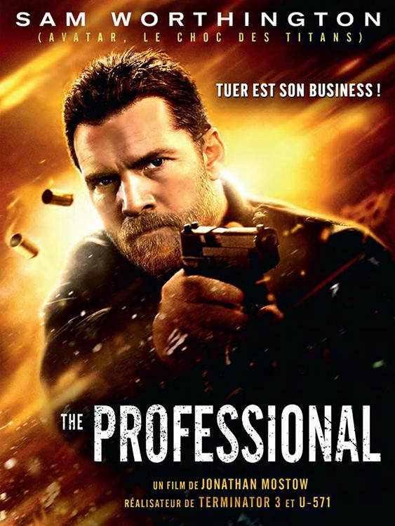 The Professional TRUEFRENCH DVDRIP 2017
