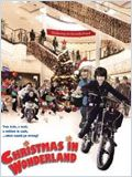 Christmas in Wonderland FRENCH DVDRIP 2010