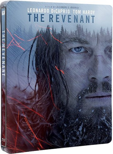 The Revenant FRENCH BluRay 720p 2016