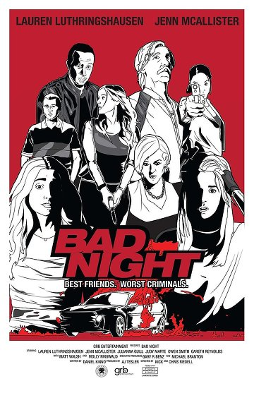 Bad Night TRUEFRENCH DVDSCR 2015