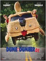 Dumb & Dumber De FRENCH DVDRIP 2014
