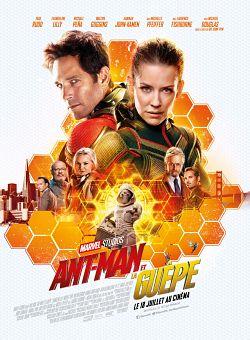 Ant-Man et la Guêpe FRENCH BluRay 1080p 2018