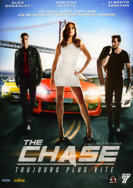 The Chase FRENCH DVDRIP 2013