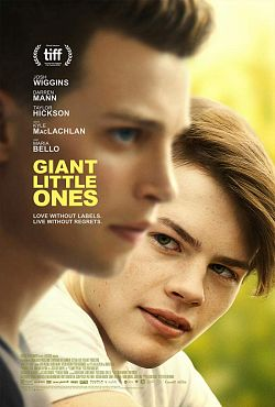 Giant Little Ones FRENCH WEBRIP 1080p 2019