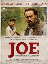 Joe VOSTFR DVDRIP 2014