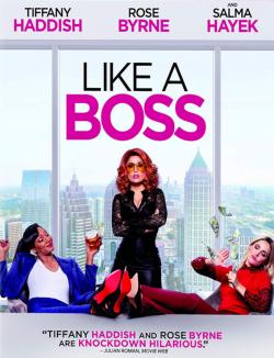 Like a Boss TRUEFRENCH BluRay 720p 2020