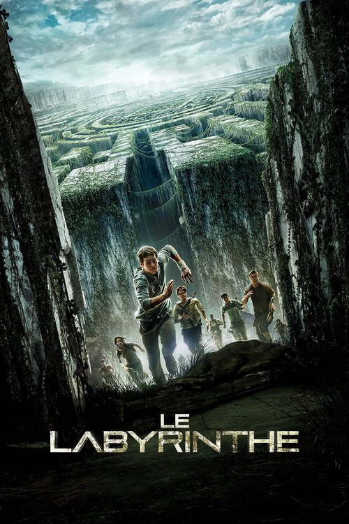 Le Labyrinthe FRENCH HDlight 1080p 2014