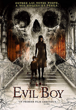 Evil Boy FRENCH WEBRIP 720p 2020