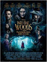 Into the Woods, Promenons-nous dans les bois VOSTFR DVDRIP 2015
