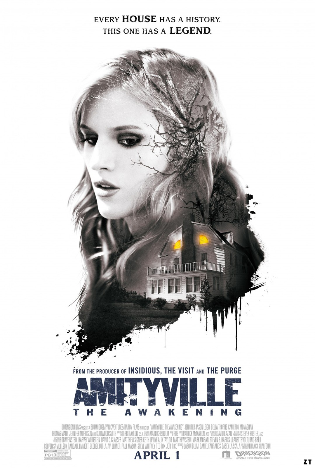 Amityville: The Awakening FRENCH WEBRIP 2017