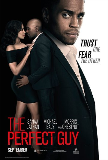 The Perfect Guy FRENCH BluRay 720p 2015