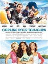 Copains pour toujours FRENCH DVDRIP 2010