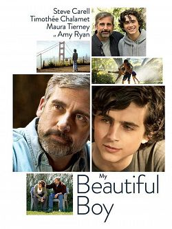 My Beautiful Boy TRUEFRENCH DVDRIP 2019