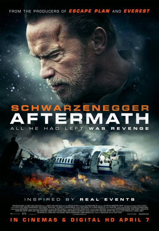Aftermath FRENCH BluRay 1080p 2017