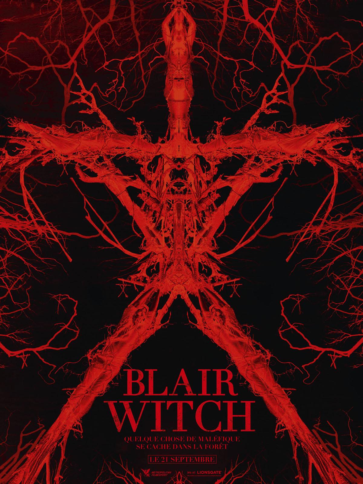 Blair Witch TRUEFRENCH DVDRIP 2016