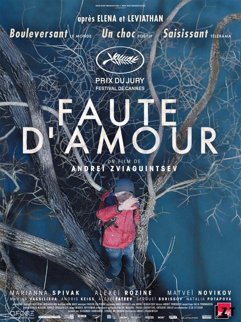 Faute d'amour FRENCH BluRay 1080p 2018