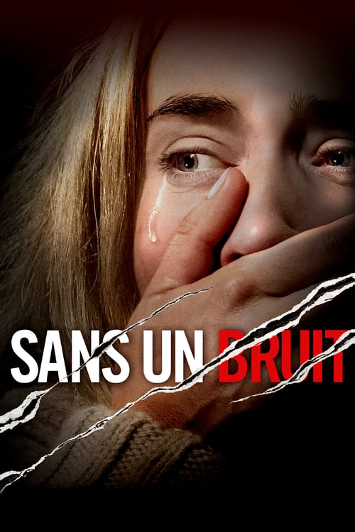 Sans un bruit FRENCH BluRay 1080p 2018