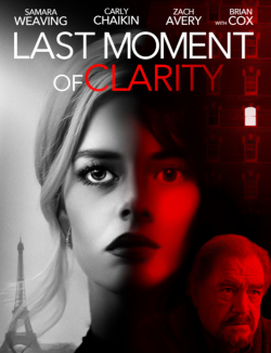 Last Moment of Clarity FRENCH WEBRIP 1080p 2020