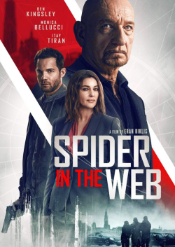 Spider in the Web FRENCH BluRay 720p 2020