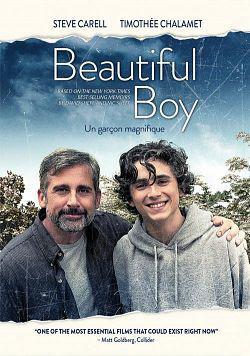My beautiful boy FRENCH WEB-DL 720p 2019