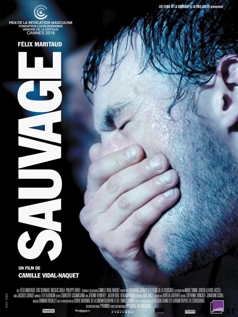 Sauvage FRENCH DVDRIP 2019