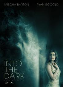 Into the Dark FRENCH DVDRIP x264 2014
