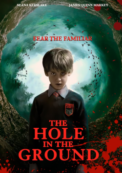 The Hole In The Ground TRUEFRENCH BluRay 1080p 2020