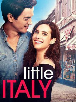 Little Italy TRUEFRENCH DVDRIP 2018