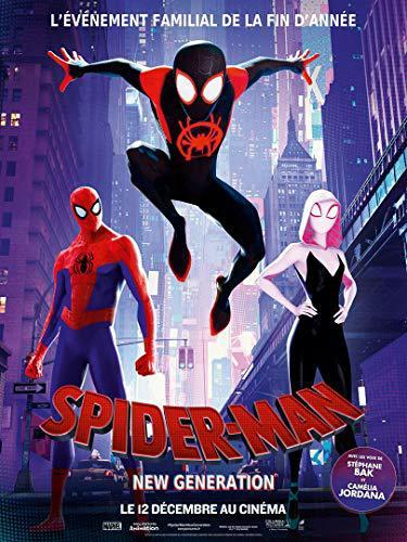 Spider-Man : New Generation MULTI BluRay 1080p 2018