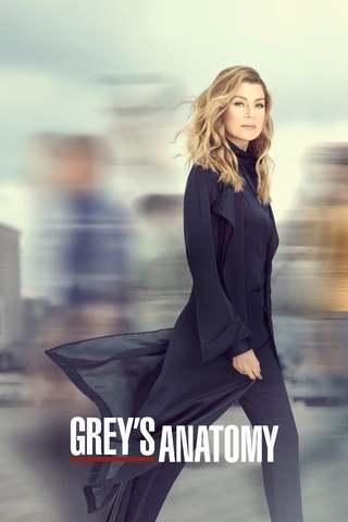 Grey's Anatomy S16E04 VOSTFR HDTV