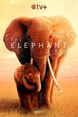 The Elephant Queen FRENCH WEBRIP 720p 2019